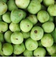 Fresh Tinda 550g (Only for Munich Based Customers )